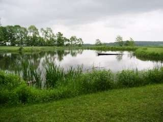 Spring Fed Pond--Great for Picnics and Swimming