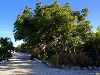 Cudjoe Key cottage photo - Our Landscaping