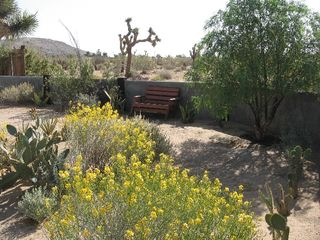 Joshua Tree house photo - Terrace front yard
