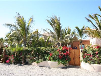 Todos Santos house rental - The property is surrounded by lush and tropical plants.
