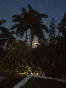 Full moon rising in time for romantic dinner on verandah