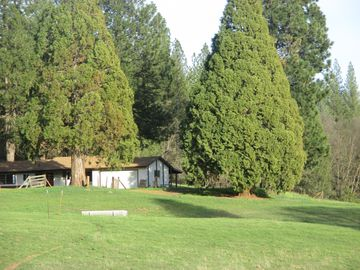 "Groveland house rental - Our ""Ranch Style Home"" is very private, surrounded by big trees and lots of room"