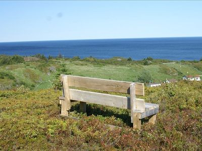 Your private bench for reading or contemplating