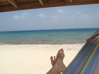 Cayman Brac house photo - chillin' in the hammock hut
