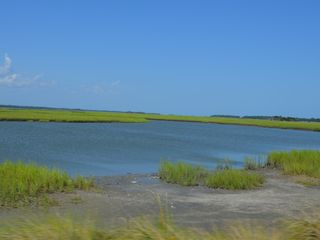 Kiawah Island villa photo - Kiawah's beautiful wetlands