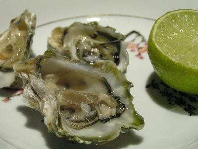 Worlds best oysters