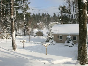 Backyard in Winter.