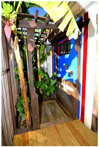 Key West house rental - Outside Shower