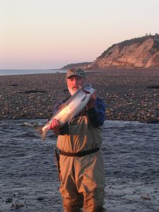 Nice silver salmon caught 10 minutes from the house