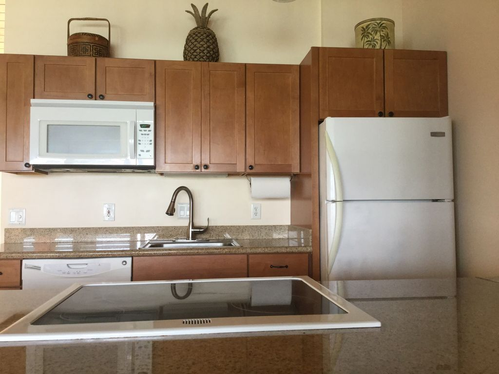 Full sized appliances, granite counter tops and new cabinets.  Just like home...