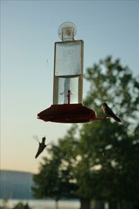 Enjoy watching the hummingbirds as you dine in the eat-in kitchen.