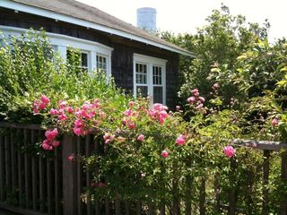 Siasconset cottage photo - Cottage with roses and water tower in distance