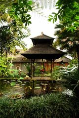 Ubud villa photo - Ponds are strategically placed around the gardens.