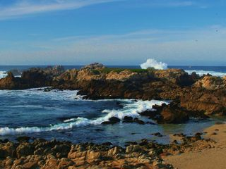 Pacific Grove house photo - Majestic Pacific Grove coastline near the golf course