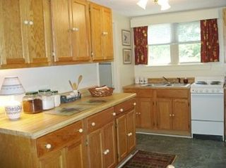 Large Kitchen* Prepare Home-Cooked meals or Picnics for Adventures in the Smokys