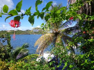 Cupecoy apartment photo - Lush tropical plants on the way to private dock.
