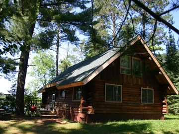 Log Home in the big pines