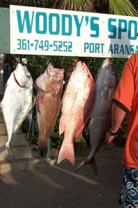 Port Aransas has great fishing!