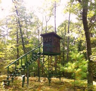 Gladwin house rental - Great Pyramind Hunting Blind (1 of 8-see our website for additional pix)