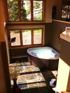 Indoor Hot Tub- Lower level of two story Master Bedroom.
