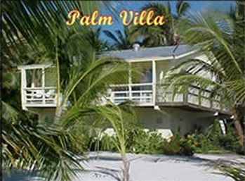 The Palm Villa