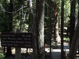 Mariposa house photo - Hiking trail in Yosemite