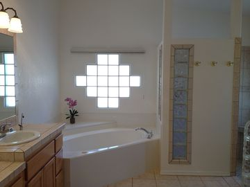 Master Bathroom with jetted jacuzzi Tub