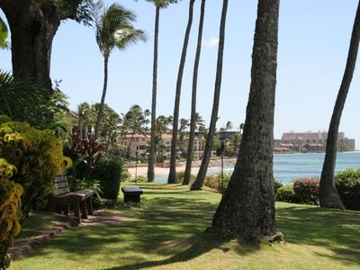 The garden with ocean front and beach access....