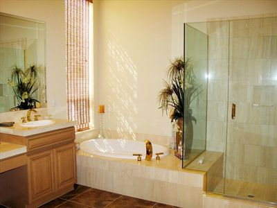 The Master Bath is elegantly decorated and featuers a walk-in 12X8 foot closet