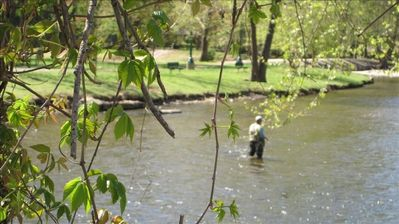 Enjoy trout fishing in local streams and rivers