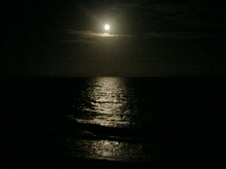 Carolina Beach condo photo - Full moon over the ocean - romatic!