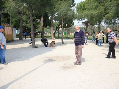 Park des Arenes de Cimiez, a vast olive grove where locals play petanque