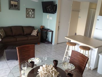 Modern, brand new, comfortable furniture, plasma t.v. all open up to the ocean.