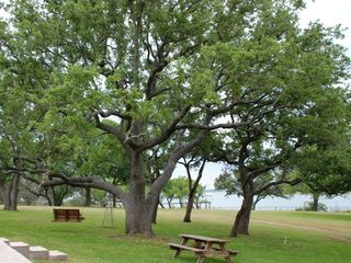 Lake Buchanan house photo - The lake from your back door.