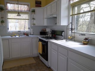 Allegan house photo - Bright Kitchen