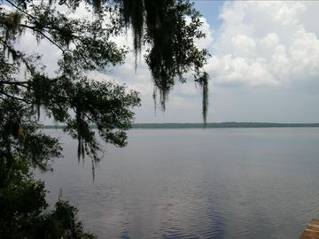 Eustis estate rental - Beautiful 1700 acre Lake Dorr and the Ocala in your backyard.