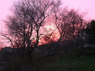 Kittery house photo - Beautiful sunsets from the back yard