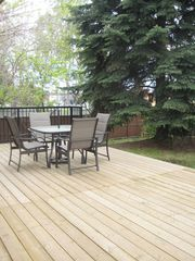 Calgary house photo - Hugh backyard with mature trees, deck, patio furniture and BBQ!