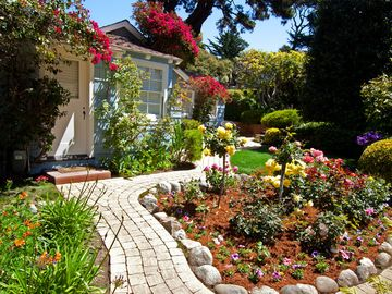 Carmel cottage rental - Rose garden behind Home Port Cottage.