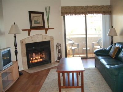 Living room and outdoor balcony, working fireplace, wood floors, pet-friendly.