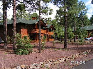 Pinetop condo photo - Your Home away from Home....Surounded by Pine Forests