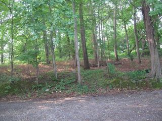 Annapolis house photo - Private wooded setting for privacy, peace & quiet.