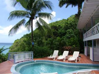 Marigot Bay apartment photo - The pool, palm, and ocean cottage