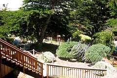 Watsonville condo photo - View from Front Door