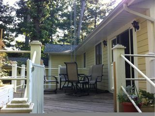 New Buffalo house photo - Back deck overlooking forest