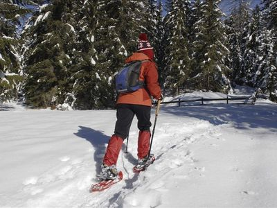 Snowshoeing at Blue Moon Cabin and nearby areas.
