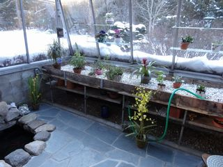 North Conway house photo - Solarium with herb garden and corner koi pond