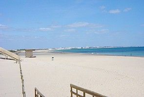 Meia Praia Beach only 600m from apartment