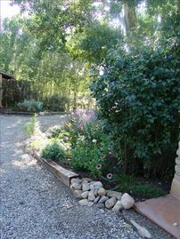 Taos house rental - Welcome to my home-the front driveway--my garden paradise
