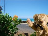Aloha from the sunny south shores of Kauai!